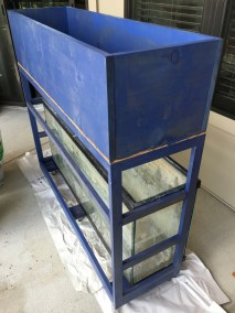 Several Coat of Blue Stain