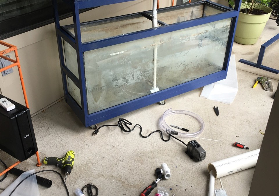 Small-Scale Aquaponics Patio System Build