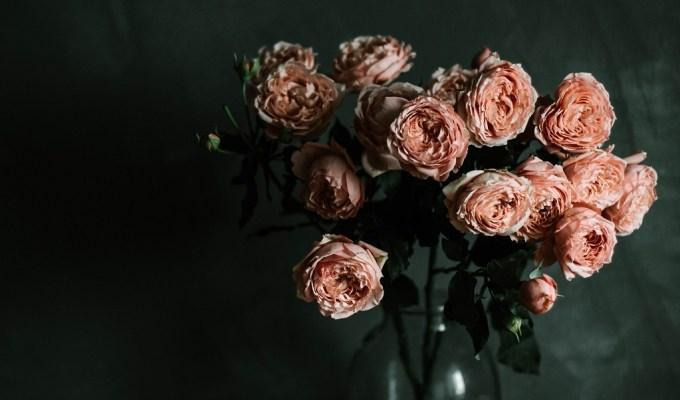 Kako cvijeće održati duže svježim