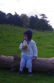 Richmond park with toddler