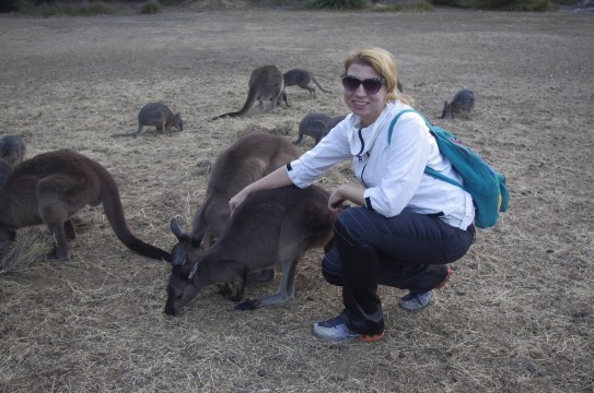 Volunteering Australia animals