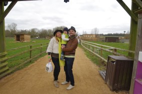 7 countryside trips from London: Willows Activity Farm
