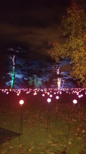 Cristmas lights at Kew Gardens