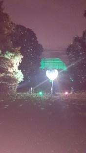 Kew Gardens at night