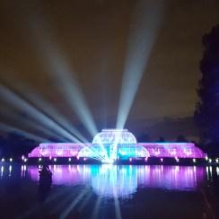 Visit Kew Gardens with kids: Xmas