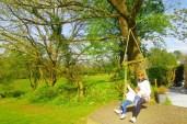 Swings & playarea Kilminorth Cotages