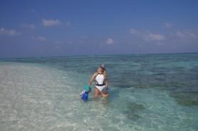 Best island in Maldives for snorkeling : Angsana Velavaru