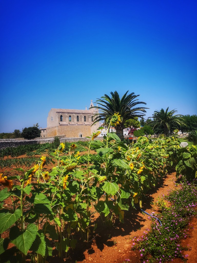 4 days in Menorca with Llucmacanes Gran