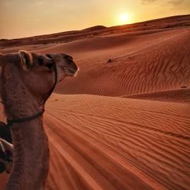 Sunset Wahiba Sands