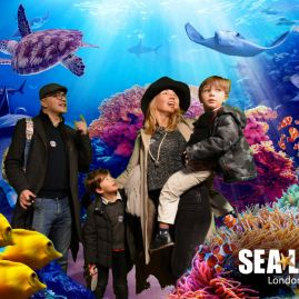 London Aquarium Christmas - educational & cool London day out