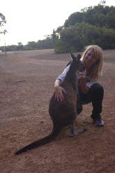 Kangaroo Island 3 day tour : wildlife sanctuaries