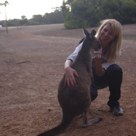 Kangaroo Island 3 day tour : wildlife sanctuaries