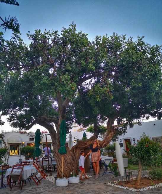 Crete village vibes at Elounda Beach Hotel & Villas
