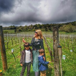 Albury Vineyard with kids