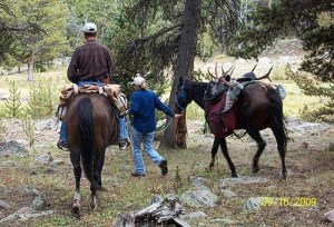 Mom and Dad packing the elk out.