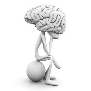 guts zen brain