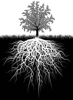 Be rooted tree