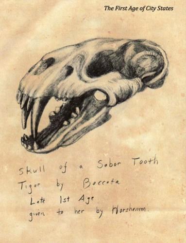 m skull sabor tooth tiger bacata