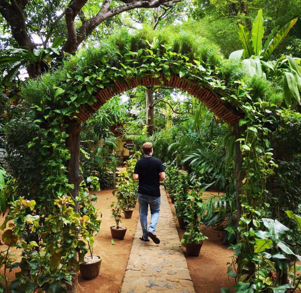 jardin temple bodhiraja