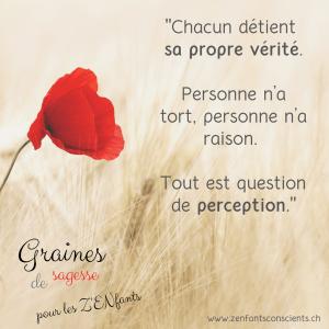 Graine de sagesse n°1: vérité et perception