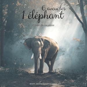 Les 6 aveugles et l'éléphant