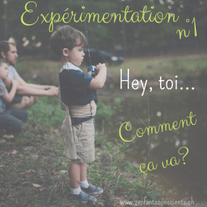 Expérimentation n°1