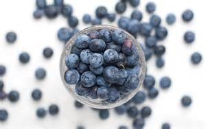 The Magic of Blueberries