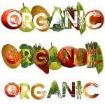 5 Benefits of Eating Organic Food