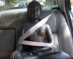 miheco, Driving the Buddha