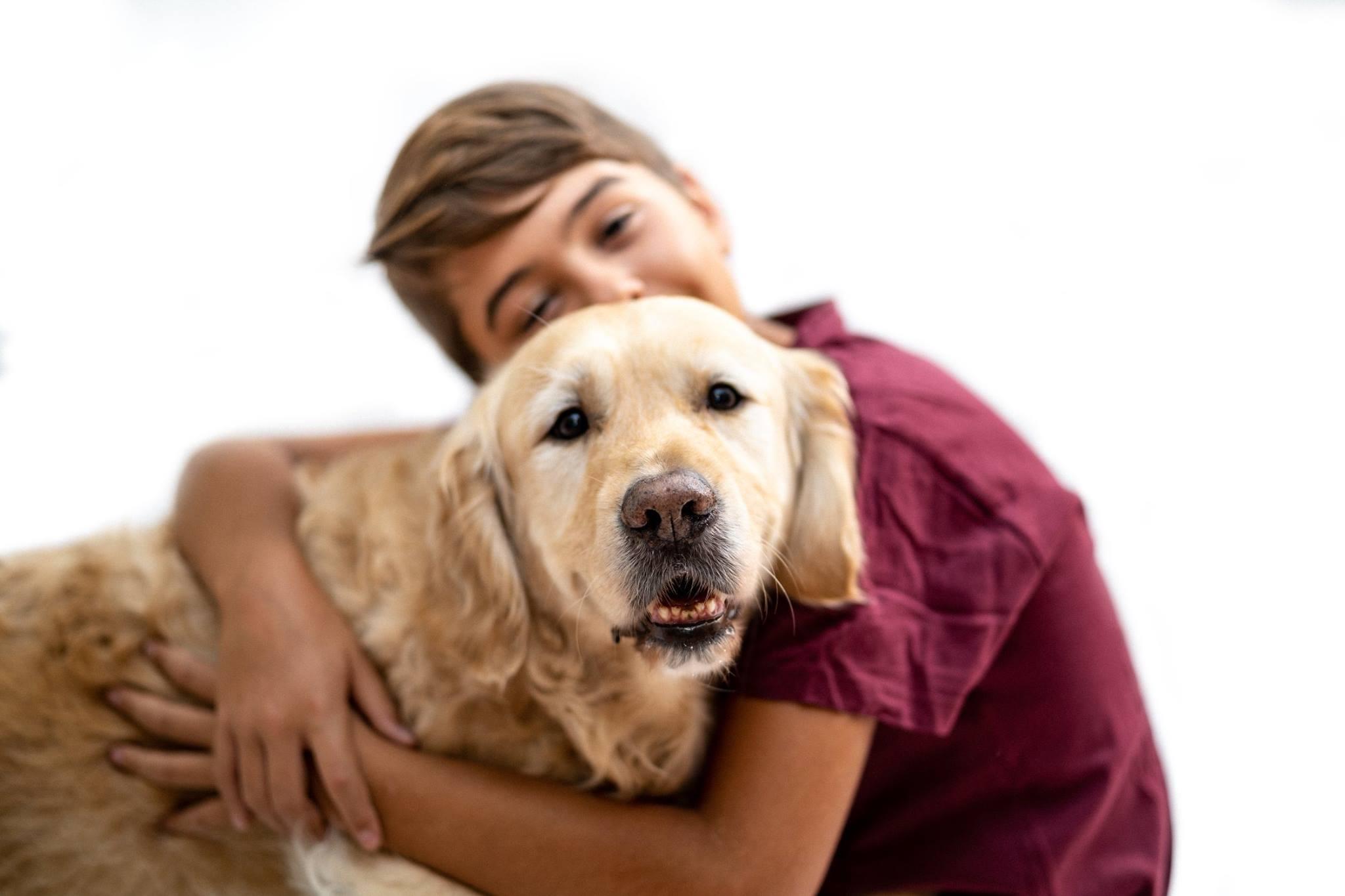 Zenit perro terapeuta