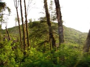 2014 5 14 PUJA DAY TRIP TO COAST 199