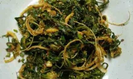 Naengi – A Mysterious Herb