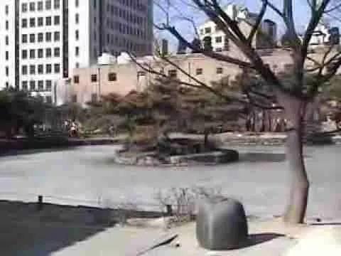 Video: Lunar New Year 2005