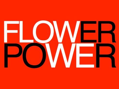 FLOWERPOWERIRIS.001