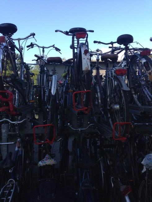 fietsrek2