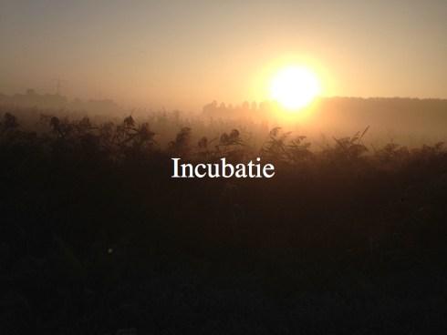 creatiefprocesblog.018