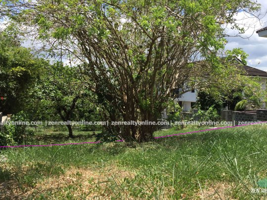 Ayala Westgrove Heights 330 sqm lot for sale