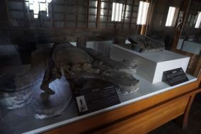 Exhibits on the ground floor before the exit