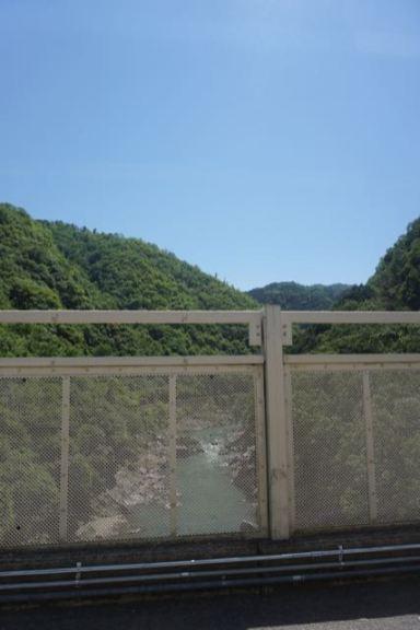 Wilderness in Arashiyama