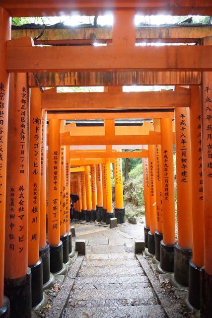Torii gates at Fushimi Inari-Taishi that are not crowded