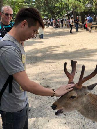 My friend patting a deer in Nara Park