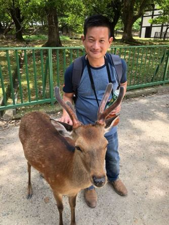 These deers are so friendly that they don't mind taking pictures with us