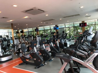 There are numerous equipment in the gym that one can get a great workout