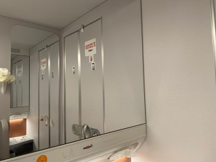 Large mirrors in the lavatory make it look bigger than it is