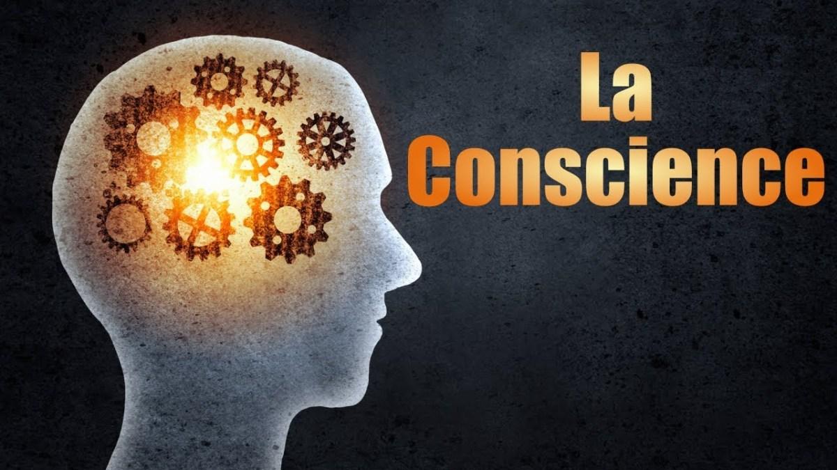 Une caisse de bon vin contre la clé de la conscience.