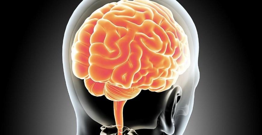 Paralajmërimi i ekspertëve: Kujdes! Pajisjet e reja ju fshijnë mendimet, pa e kuptuar
