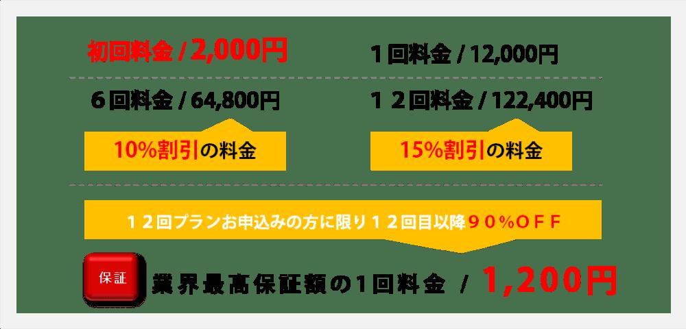 背中下【腰】脱毛料金説明初回2000円