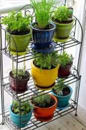 zero waste container gardening