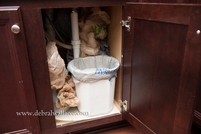 under the sink garbage soon to be eliminated-3364