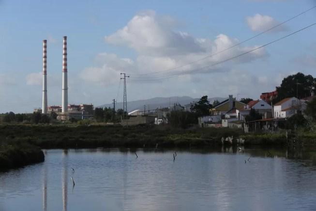Alerta ambientalista: mais de 80% dos habitats de zonas húmidas estão degradados